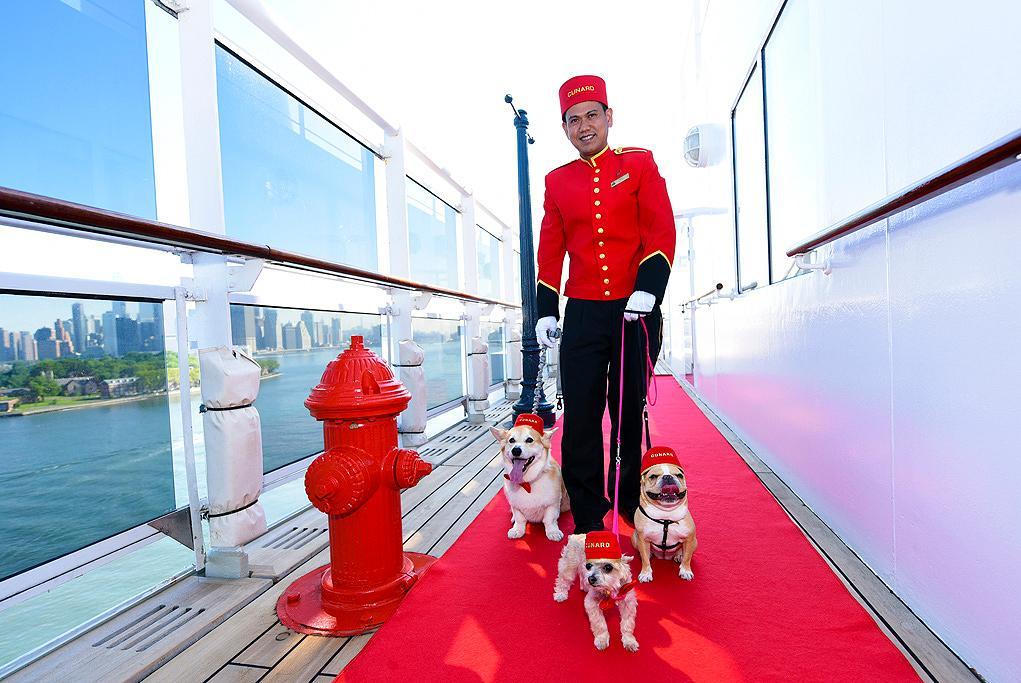Mascotas Queen Mary 2