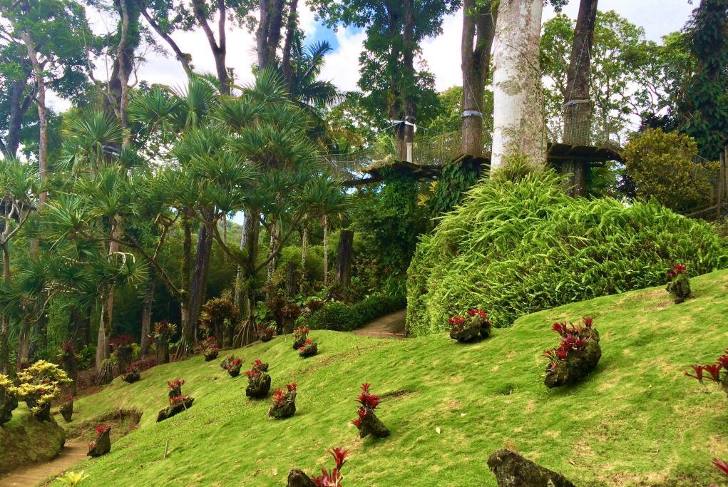 Jardín Botánico Balata - Fort de France - Martinica