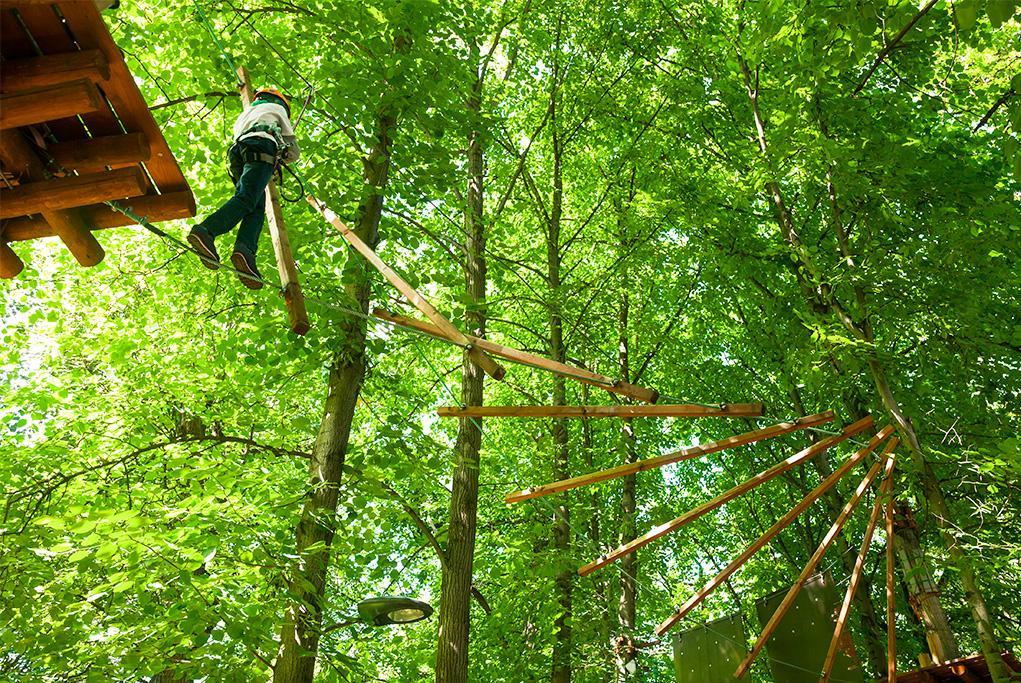 Escalada en las copas de los árboles - Manaus - Amazonas
