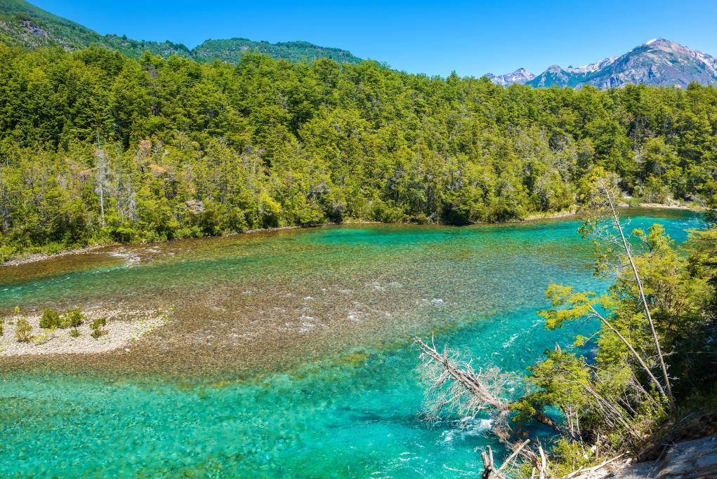 Parque Nacional Alerce Andino - Puerto Montt