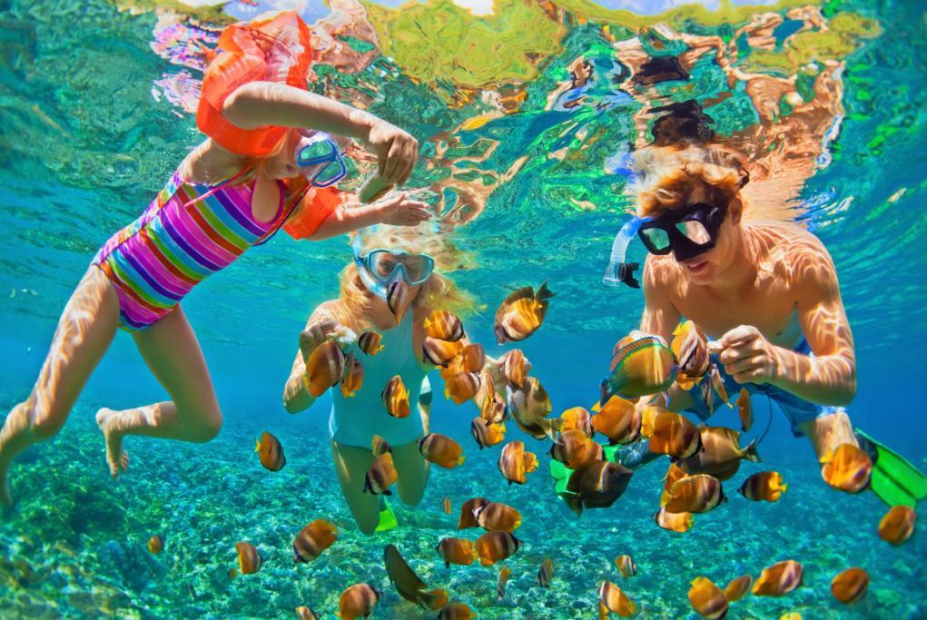 Arrecife Buck Island - Saint Croix - Usvi