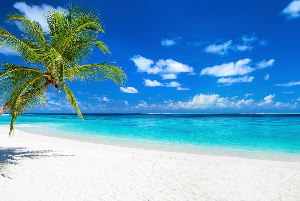 Playa Rainbow - Saint Croix - Usvi