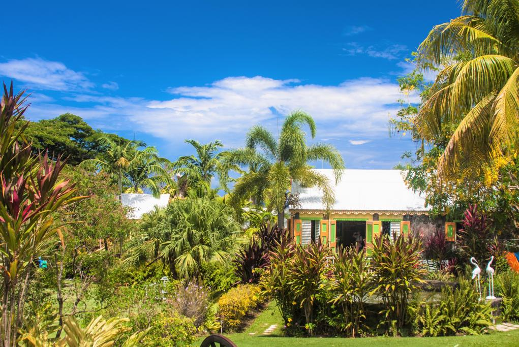 Jardín y restaurante Palms Court - Saint Kitts
