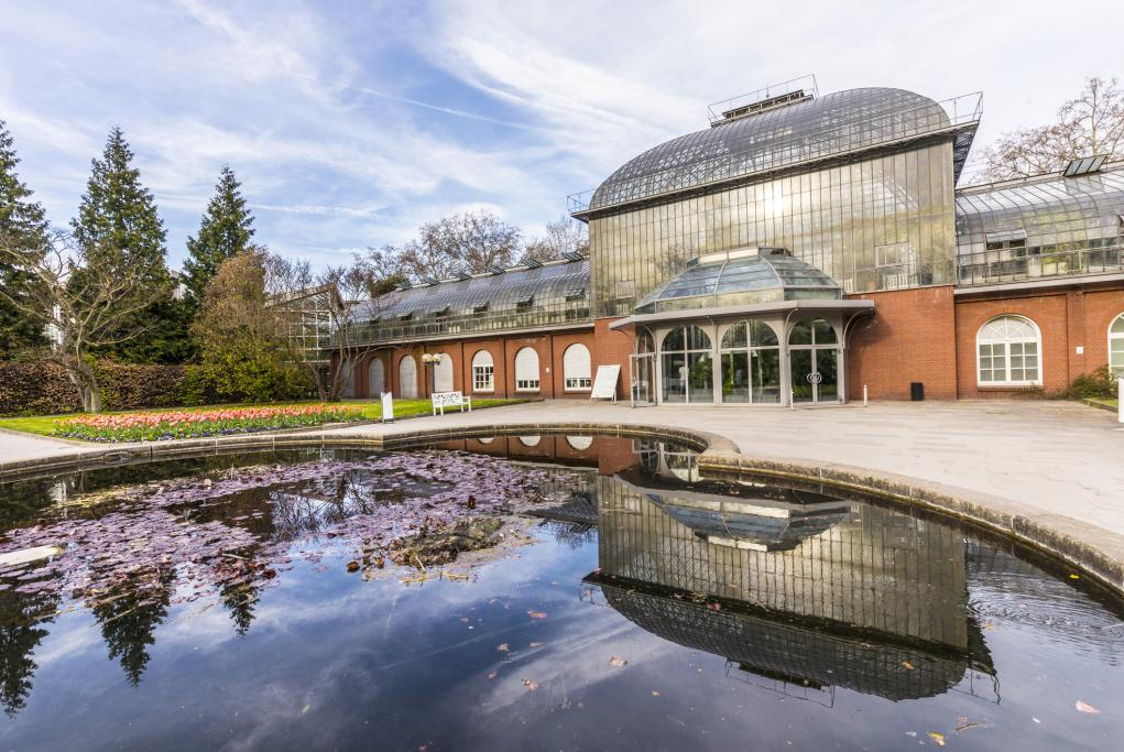 Jardín de las Palmeras - Frankfurt