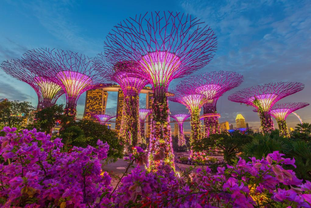 Garden by the Bay - Singapur