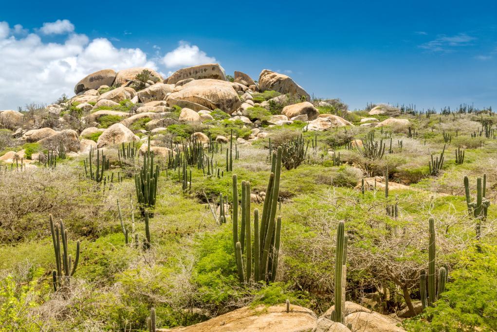 Formaciones rocosas de Ayo - Oranjestad
